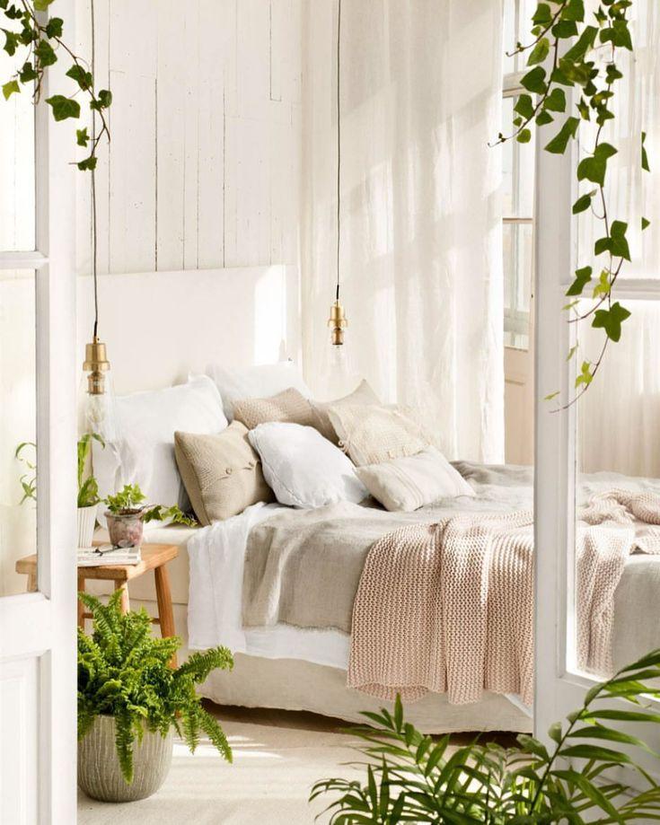 Ампельные растения для спальни