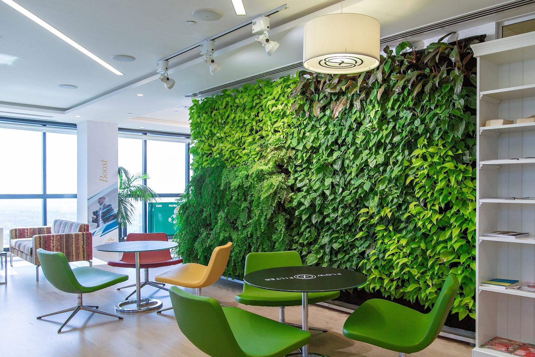 Вертикальный сад, фитостена, вертикальное озеленение